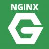 Logo NGINX